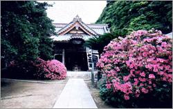祇園山 安養院 田代寺(田代観音)