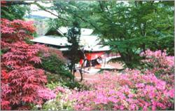 佐白山 正福寺
